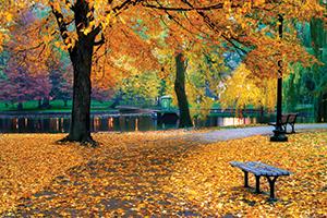Fall Splendor of Canada & New England